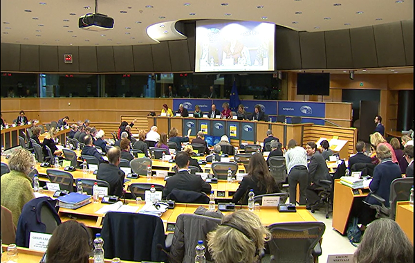 E+ Programme, Parliament, Budget