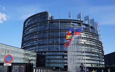 EuropeActive, Parliament, MEPs