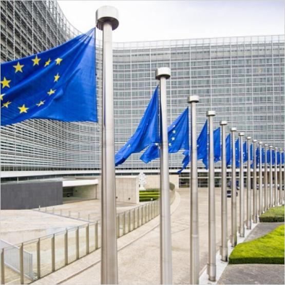 EuropeActive, European Parliament, Confirmation, Commissioners